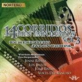 14 Corridos Bién Empolvados Echese Otro Jalón Compa, Vol. 3 by Various Artists