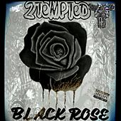 Black Rose by 2 Tempted