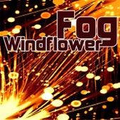 Windflower by Fog