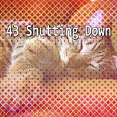 43 Shutting Down by Baby Sleep Sleep