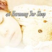 46 Harmony For Sleep de Best Relaxing SPA Music