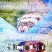 44 Freedom Of Spirit de White Noise Babies