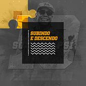 Subindo e Descendo by Psirico