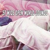 57 Wide Open World Sounds de Dormir