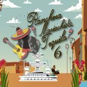 Rancheras, Mariachis & Tequila, Vol. 6 van Various Artists