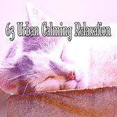 63 Urban Calming Relaxation by Ocean Sounds Collection (1)