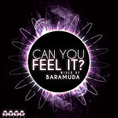 Can You Feel It? Mixed By Baramuda (Incl. 3 Non Stop DJ Mixes By Baramuda) von Various Artists