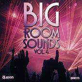 Big Room Sounds, Vol. 4 de Various Artists