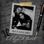El Lujo De Tenerte by Regulo Caro