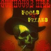 Fools 'N' Freaks by Gunhouse Hill