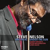 Brothers Under the Sun by Steve Nelson
