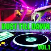 Bust Till Dawn, Vol. 1 by Various Artists