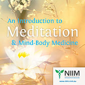 An Introduction to Meditation & Mind-Body Medicine - Volume I by Various