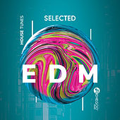 Selected EDM House Tunes by Various Artists
