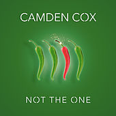 Not the One by Camden Cox