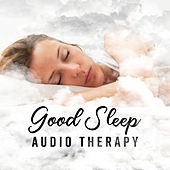 Good Sleep: Audio Therapy - Deep Calm, Evening Silence, Pure Serenity, Pleasure Time by Various Artists