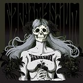 Assassins / Black Meddle, Pt. 1 by Nachtmystium