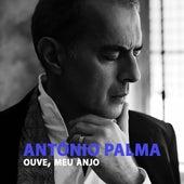 Ouve, Meu Anjo de António Palma