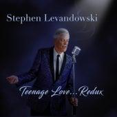 Teenage Love Redux by Stephen Levandowski