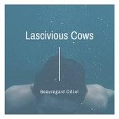 Lascivious Cows by Beauregard Ditzel