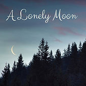 A Lonely Moon by Nature Sounds (1)