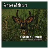 American Wilds by Echoes of Nature