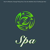 Spa: Music For Relaxation, Massage Therapy Music, Asian Zen Meditation Music & Soothing Spa Music by Spa Music (1)