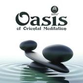 Oasis of Oriental Meditation (Relaxing Nature Sounds & Healing Therapy Music, Deep Sleep, Well-being, Spa & Massage, Easy Listening) de Meditation Mantras Guru