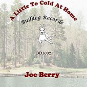 A Little to Cold at Home by Joe Berry