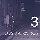 A Shot in the Dark - Nashville Jumps - Blues and Rhythm on Nashville's Independent Labels 1945-1816, Vol. 3 von Various Artists