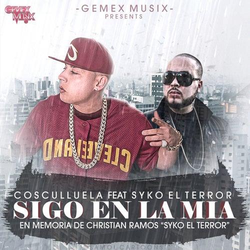 Sigo en la Mia by Cosculluela