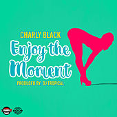 Enjoy the Moment de Charly Black