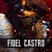 Fidel Castro by Rio