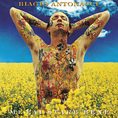 Mi Fai Stare Bene (20th Anniversary Edition / Remastered) von Biagio Antonacci