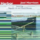 Harbor di Joel Harrison Octet