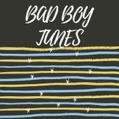Bad Boy Tunes van Various