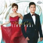 Mot Coi Tinh Phai van Various
