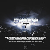 Big Room Nation von Various