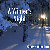 A Winter's Night: Blues Collection di Various Artists