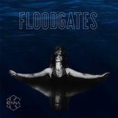 Floodgates von Kenna