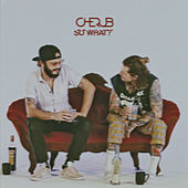 So What? by Cherub