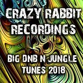 Crazy Rabbit Recordings Big DnB and Jungle Tunes 2018 by Various Artists