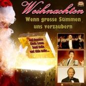 Wenn große Stimmen uns verzaubern by Various Artists