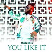 You Like It by Sean2 Miles