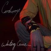 Waiting Game di Corduroy