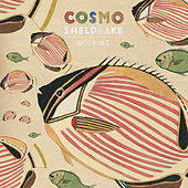 Hocking by Cosmo Sheldrake