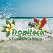 Tropiteca / Son para un Sonero by Various Artists