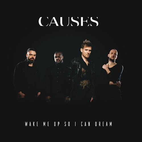 Wake Me Up So I Can Dream by Causes