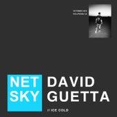 Ice Cold de Netsky & David Guetta