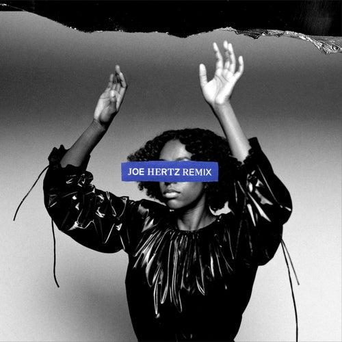 no control (Joe Hertz remix) by Anaïs